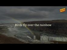 Embedded thumbnail for Somewhere Over The Rainbow - RLMUSIC Project